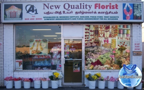 Logo of A1 New Quality Florist